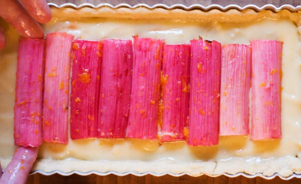 Rhubarb and custard tart